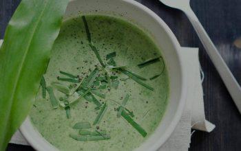 Nouveau! La soupe fraîche de courgettes à l'ail des ours