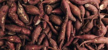 La patate douce, un légume qui gagne à être connu