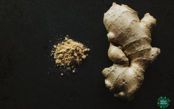 Le gingembre, cette racine aux mille et unes vertus